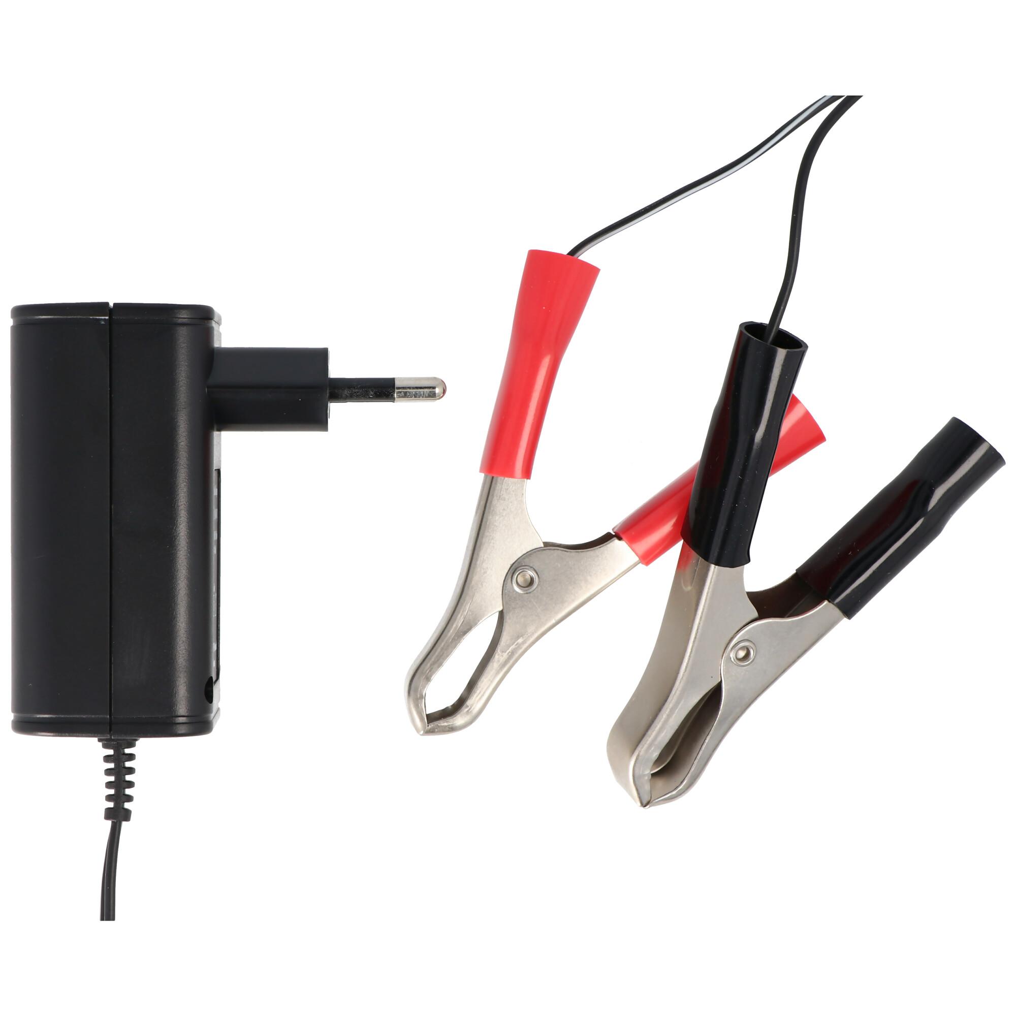 Ladegerät für 2V, 6V und 12V Blei Säure , Blei Gel und Blei